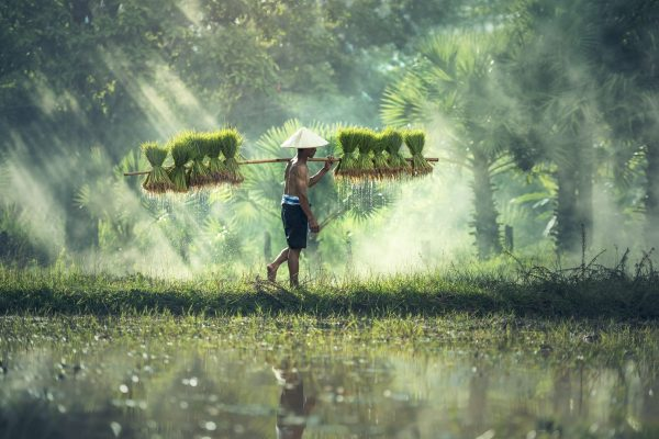 Myanmar, un paraiso dorado