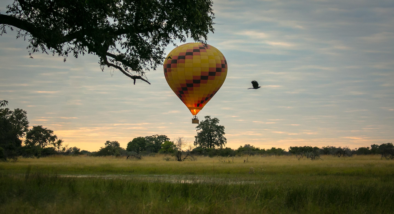 Africa,Botswana,Delta del Okavango,Bushman Plains,Actividades,Globo